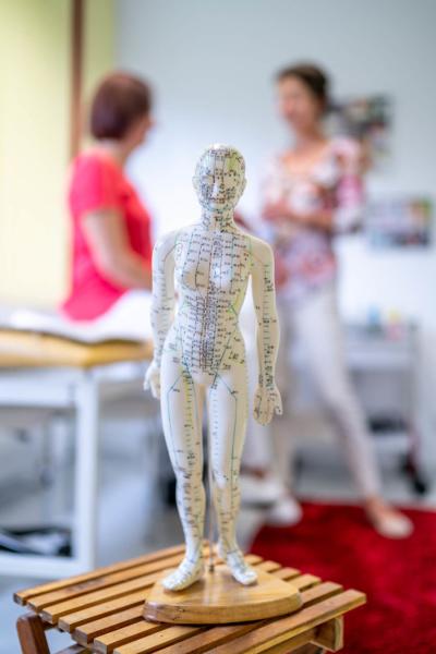 Frauenärztin Troisdorf - Dr. Bellinghausen - Leistungen der Praxis - Akupunktur